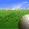 Useful Tips to Drive Better in Golf